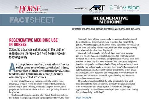 Fact Sheet: Regenerative Medicine Use in Horses – The Horse