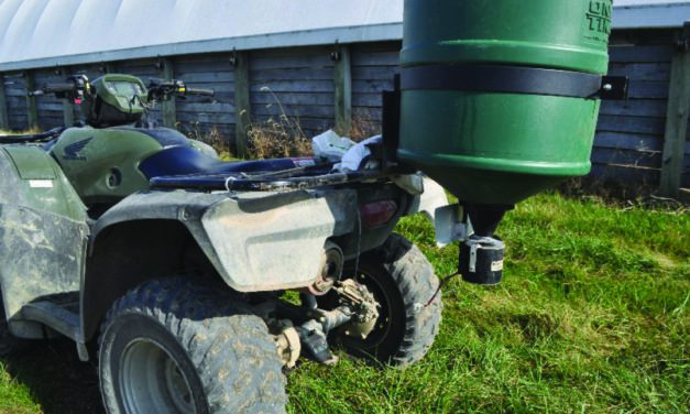 Fall Nitrogen Application Benefits Horse Pastures Year-Round