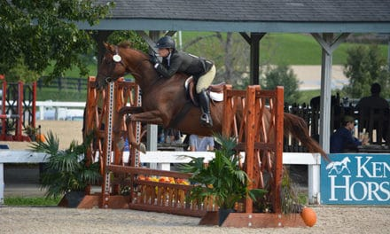 Scenes from the 2018 Retired Racehorse Project Thoroughbred Makeover