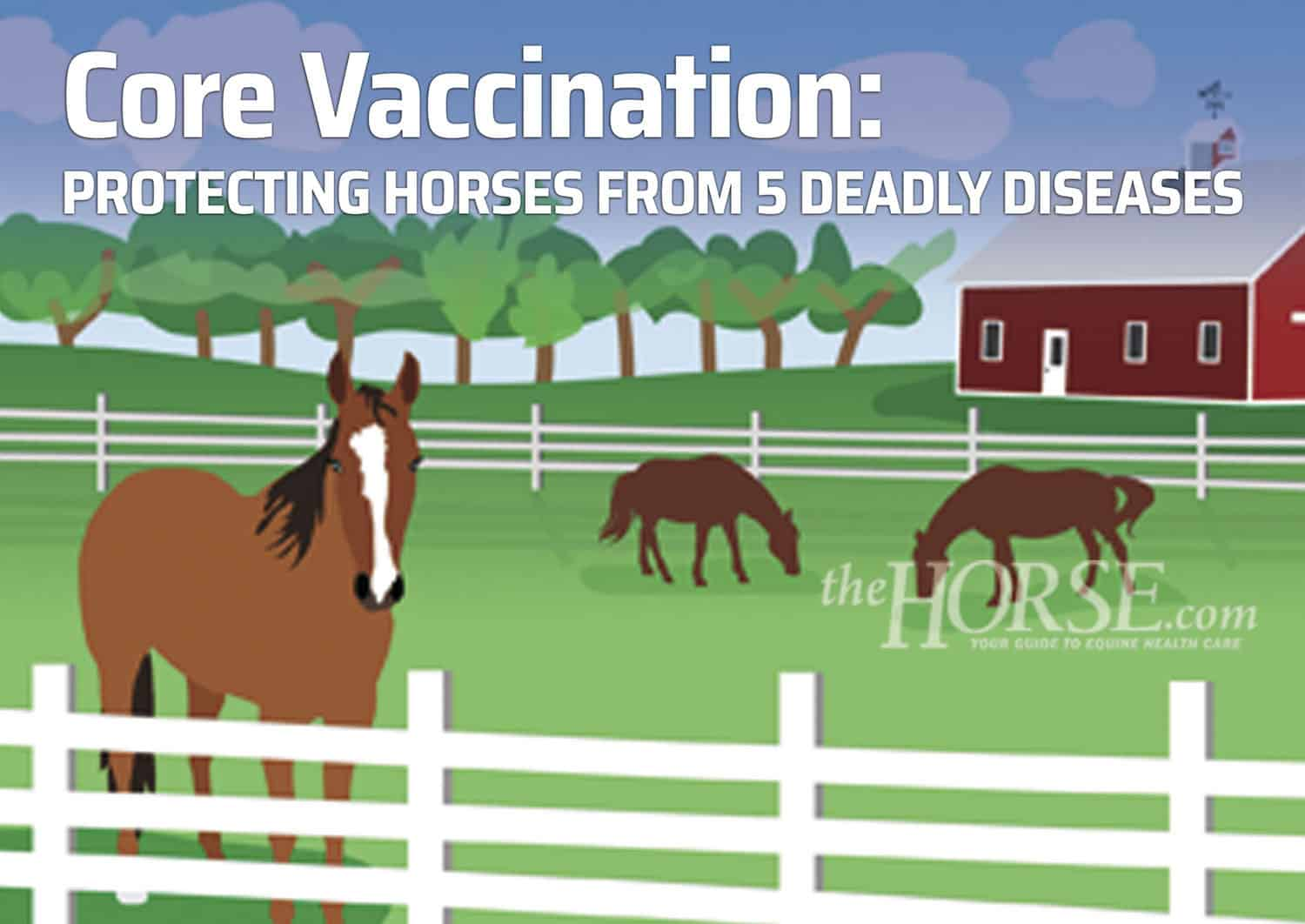 Core Vaccination: Protecting Horses From 5 Deadly Diseases