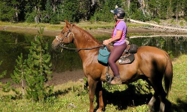Trail Riding Safety Essentials