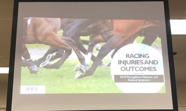 Top Tweets and Take-Homes from 2018 Thoroughbred Racing Injuries and Outcomes Panel Discussion