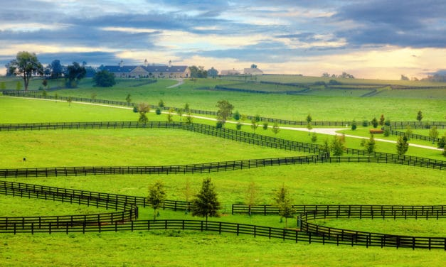 Utilizing Cost-Share Programs on Horse Farms