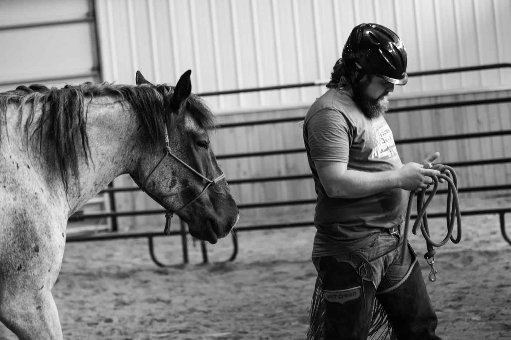 how and why horses help veterans