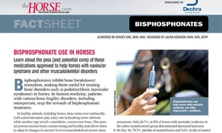 Fact Sheet: Bisphosphonate Use in Horses
