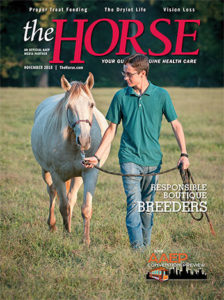 The Horse: November 2018 Issue Cover