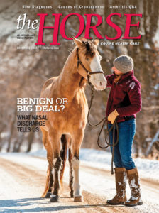 The Horse - December 2018 issue