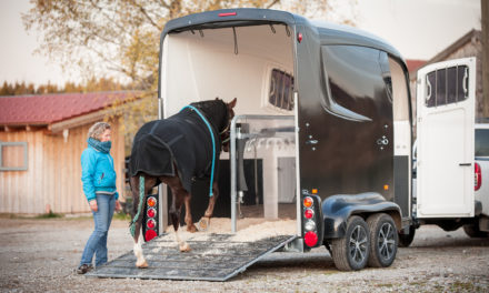 Motion Sickness, Trailer Loading Troubles, and Your Horse