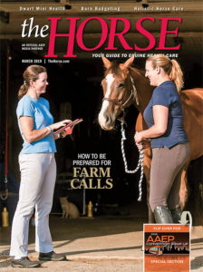 The Horse: March 2019 Issue