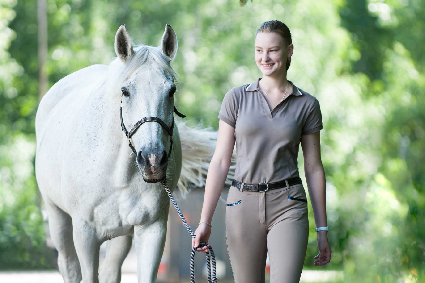 The Science of Rehoming Horses