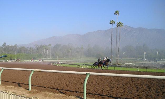 Racehorse Breakdowns: Prosecutor's Probe Finds No Wrongdoing at Santa Anita