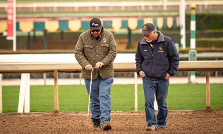 Studying Santa Anita: A Key to Making Horse Racing Safer
