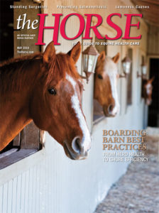Horse Boarding Barn Best Practices – The Horse