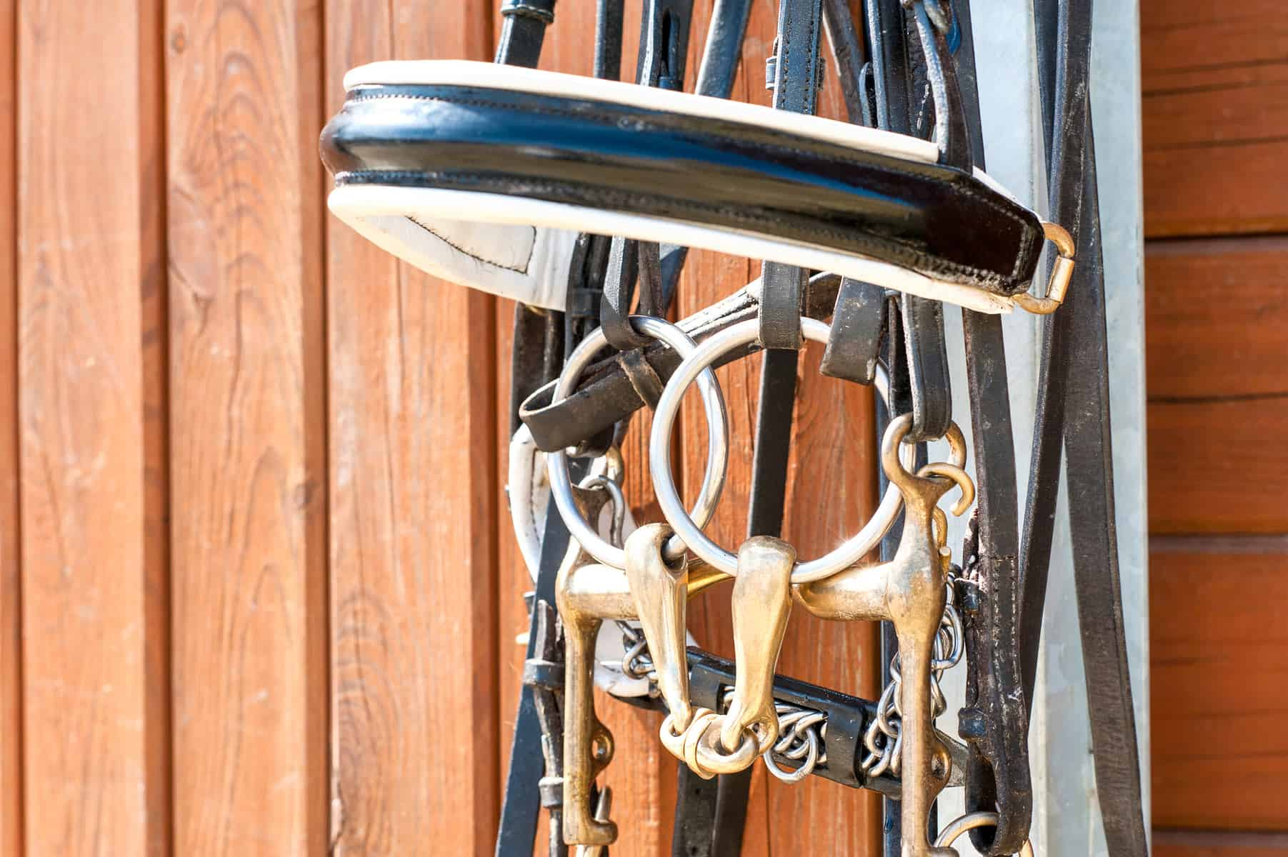 How to Inventory and Insure Your Horse Tack