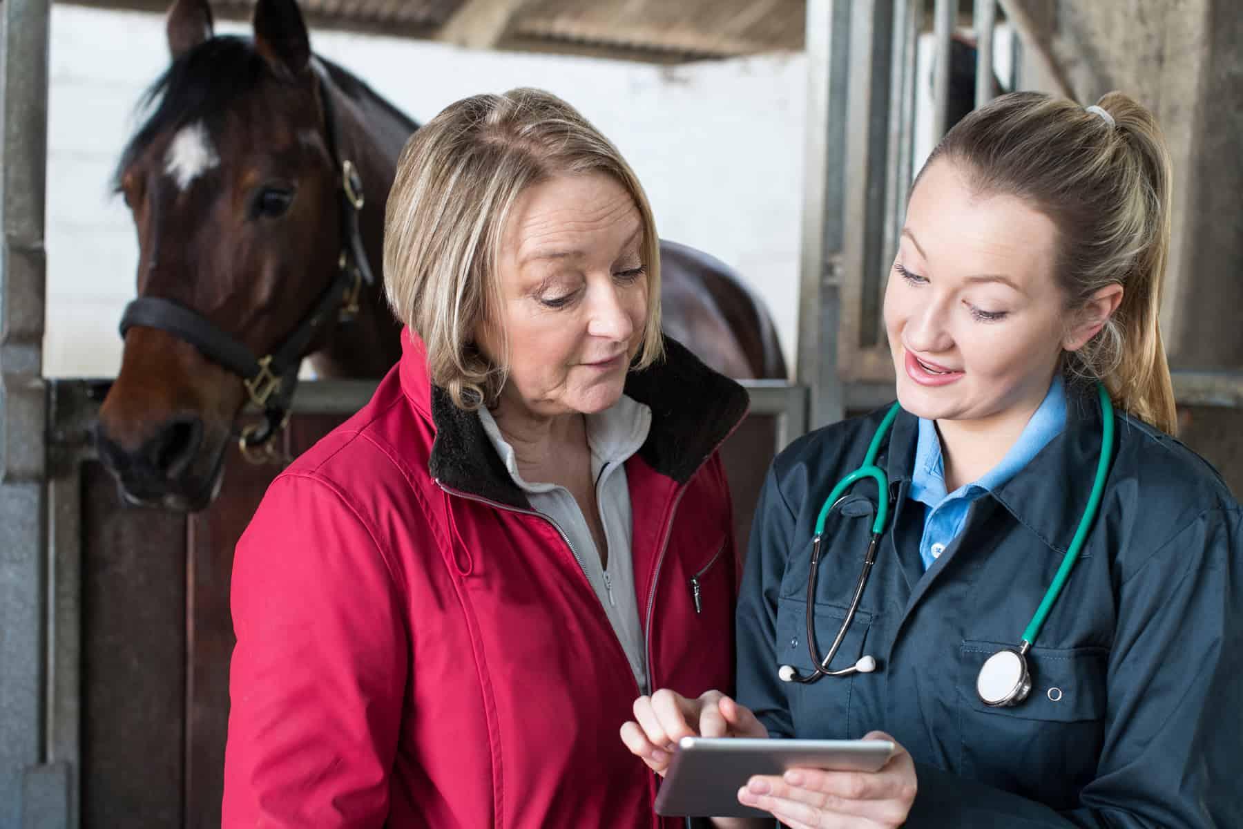 Keeping Equine Preventive Care Organized