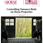 Problem Solver: Controlling Nuisance Birds on Horse Properties