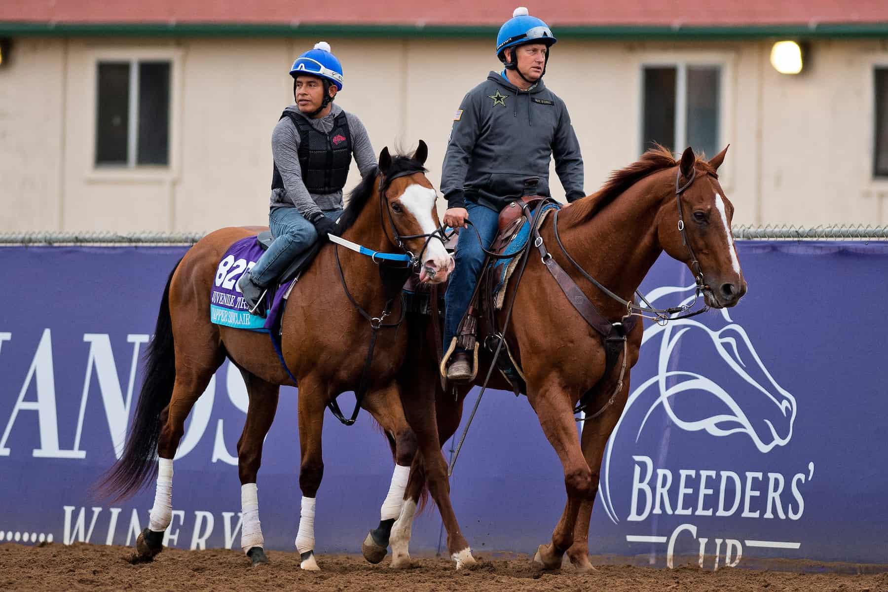 track ponies
