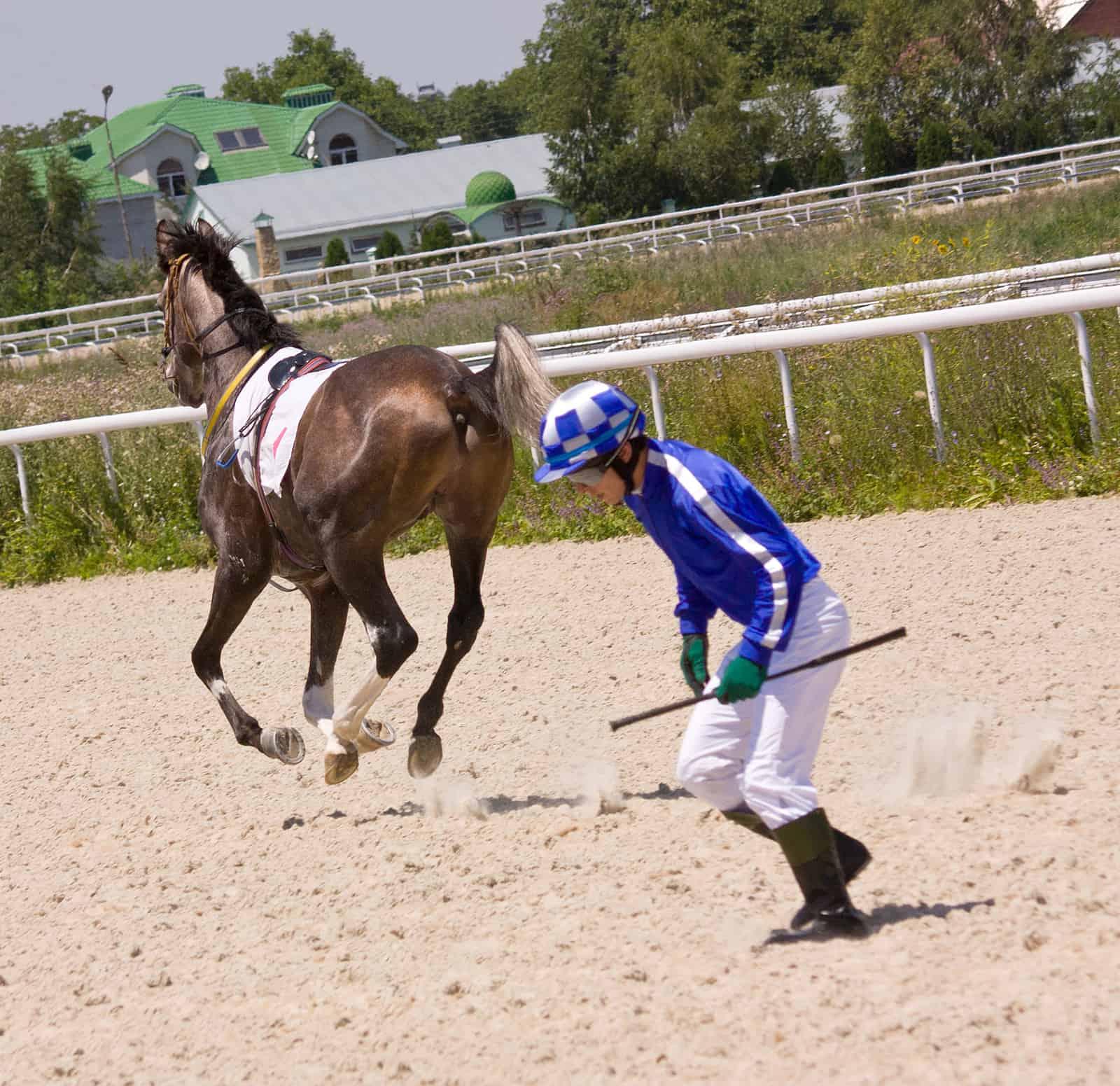 Jockey Injury Reporting at Maryland Thoroughbred Racetracks