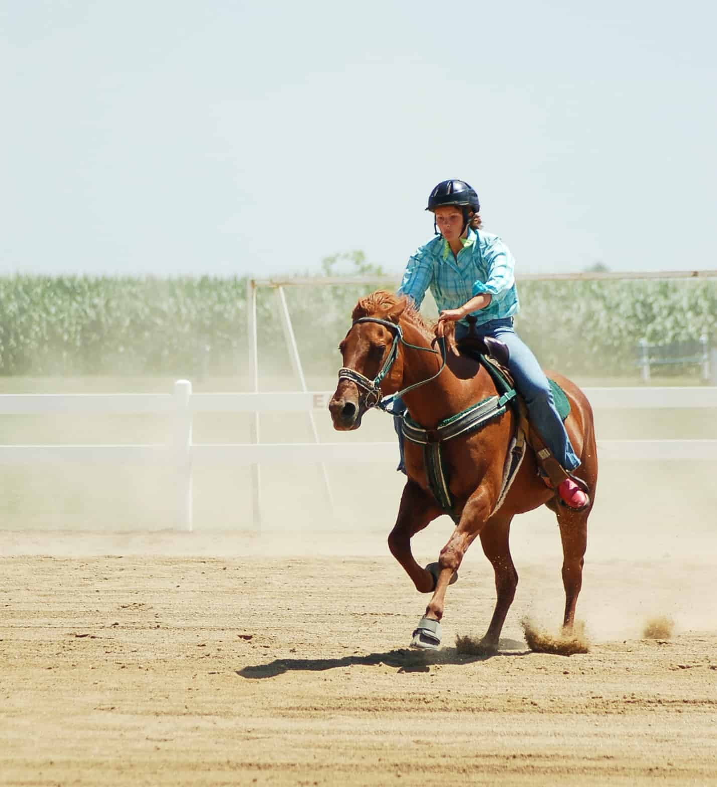 Diagnosing Performance Problems in Western Horses