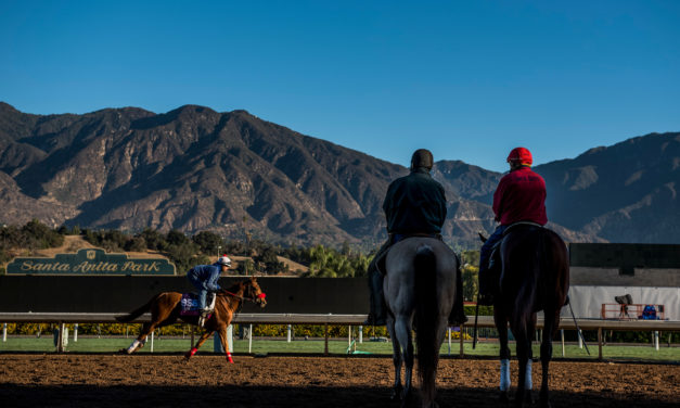 AAEP Convention: Horse Racing Safety Review