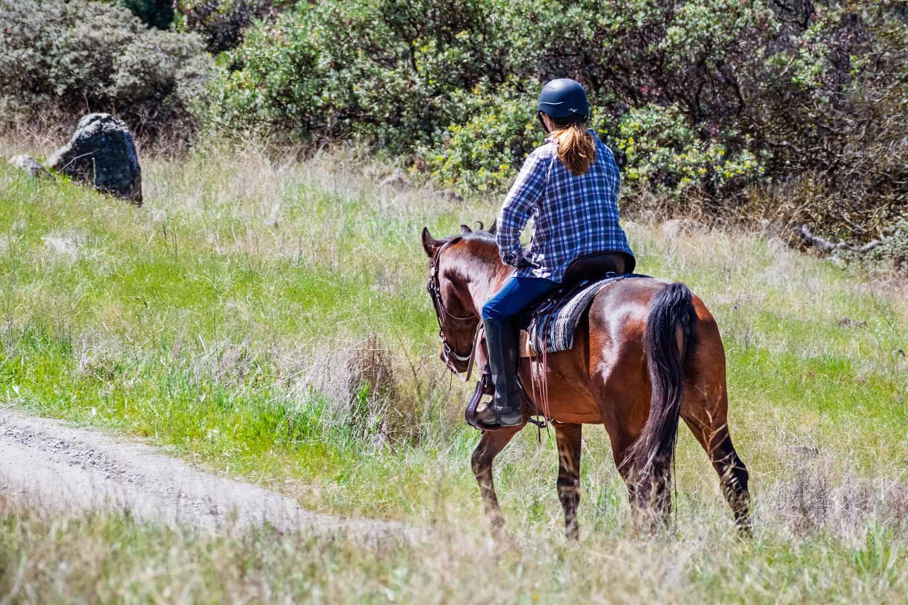 greener horse trails