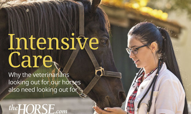 Intensive Care for Equine Veterinarians