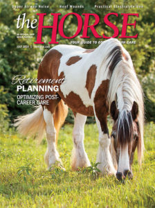 The Horse July 2019