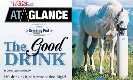 At a Glance: The Good Drink: Keeping Horses Hydrated
