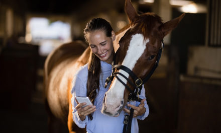 Track Your Horse's Temperature Using an Embedded Thermometer