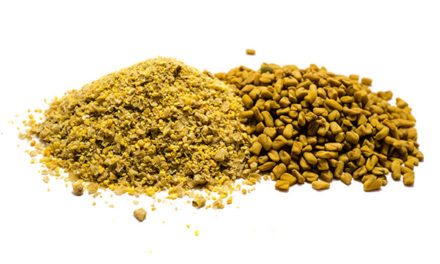 Consider Flavoring Your Horse's High-Fiber Feed With Fenugreek