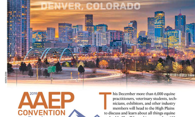 2019 AAEP Convention Preview From <em>The Horse</em>