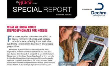 Special Report: What We Know About Bisphosphonates For Horses
