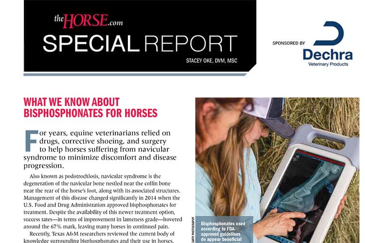 What We Know About Bisphosphonates For Horses