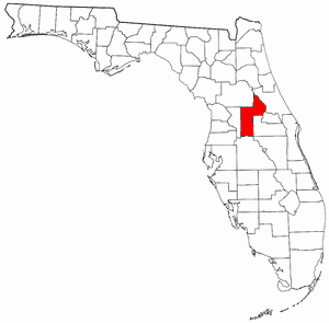 EEE Claims Another Florida Equine