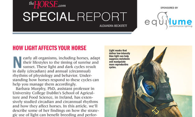 Special Report: How Light Affects Your Horse