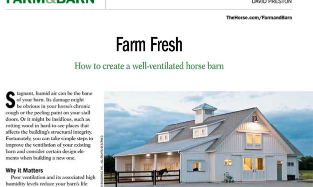 How to Create a Well-Ventilated Horse Barn