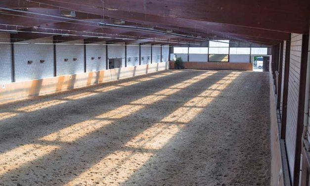 Initial Results From UK Indoor Horse Arena Survey Released