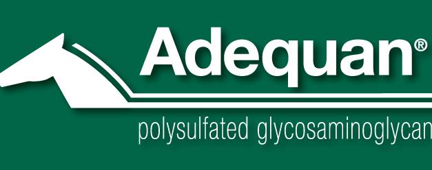 2019 AAEP Coverage Partner: American Regent Animal Health