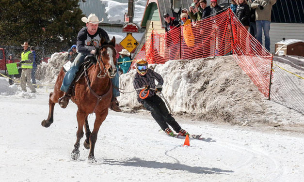 Winter Horse Sports: Skijoring