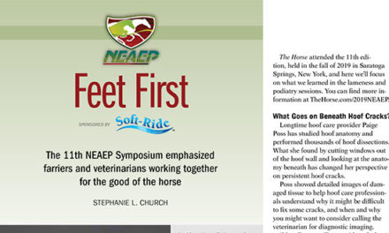 2019 Northeast Association of Equine Practitioners Symposium Wrap-Up