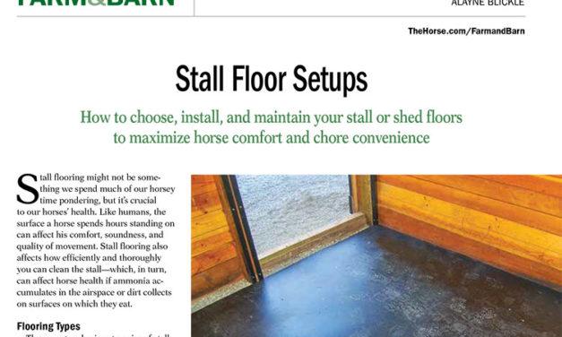 Horse Stall Floor Setups