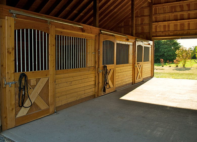 5 Common Things You Won't Find in Horse Vet's Barn