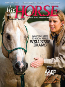 The Horse - March 2020