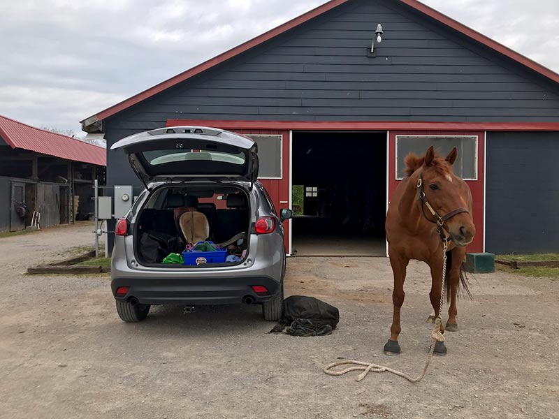 14 Tips to Keep Yourself Safe From COVID-19 When Trail Riding