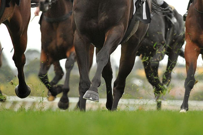 Using Stride Parameters to Prevent Racing Injuries