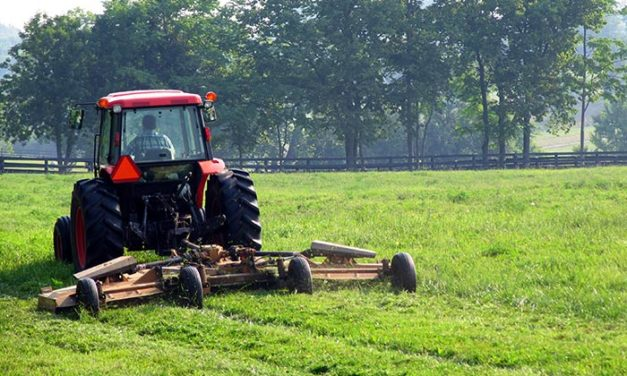 Mowing Horse Pastures to Keep Them Healthy