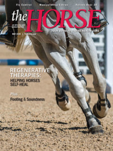 The Horse - May 2020