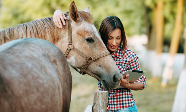 Study: Mobile App Gives Reliable Equine Semen Analysis