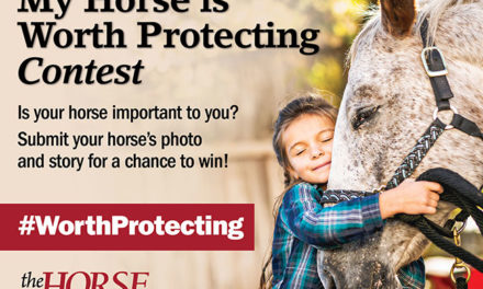 "Enter <em>The Horse</em>'s ""My Horse is Worth Protecting"" Contest"