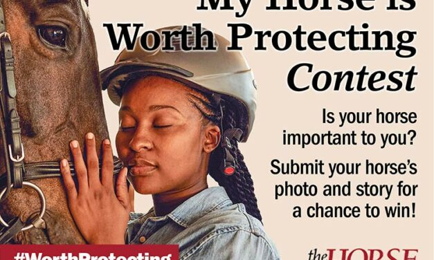 Enter <em>The Horse</em>'s 'My Horse is Worth Protecting' Contest